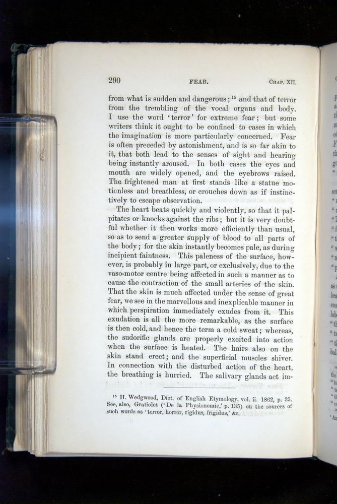 Image of Darwin-F1142-1872-290