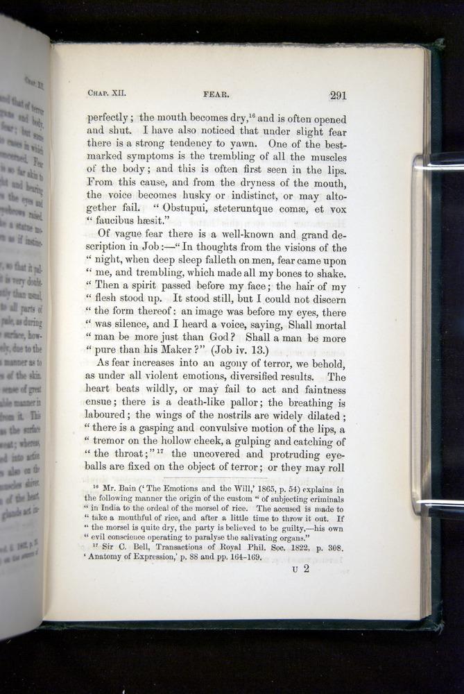 Image of Darwin-F1142-1872-291