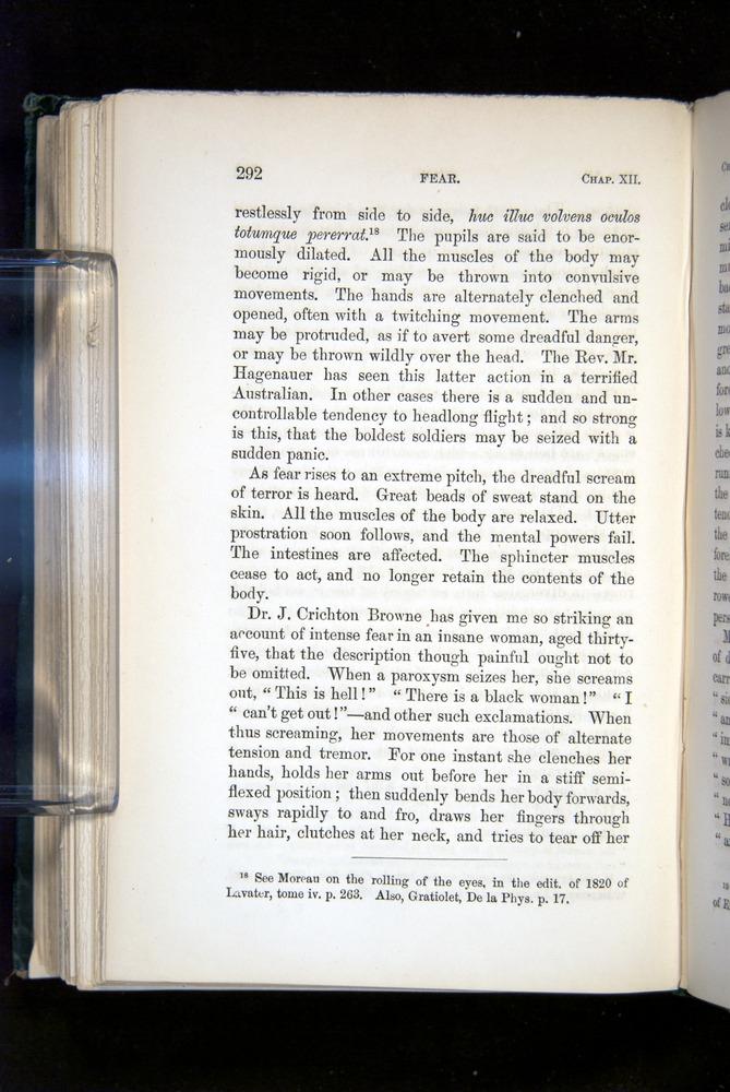 Image of Darwin-F1142-1872-292