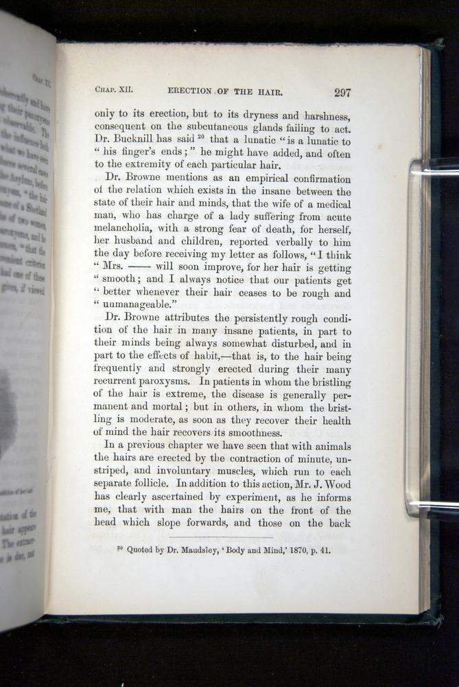 Image of Darwin-F1142-1872-297