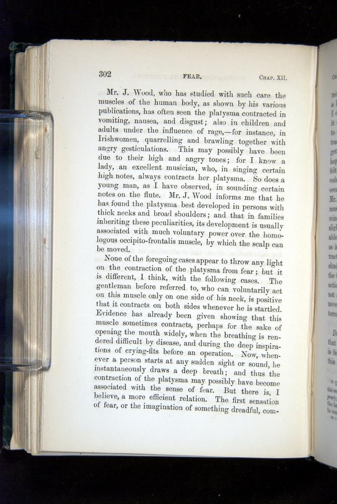 Image of Darwin-F1142-1872-302