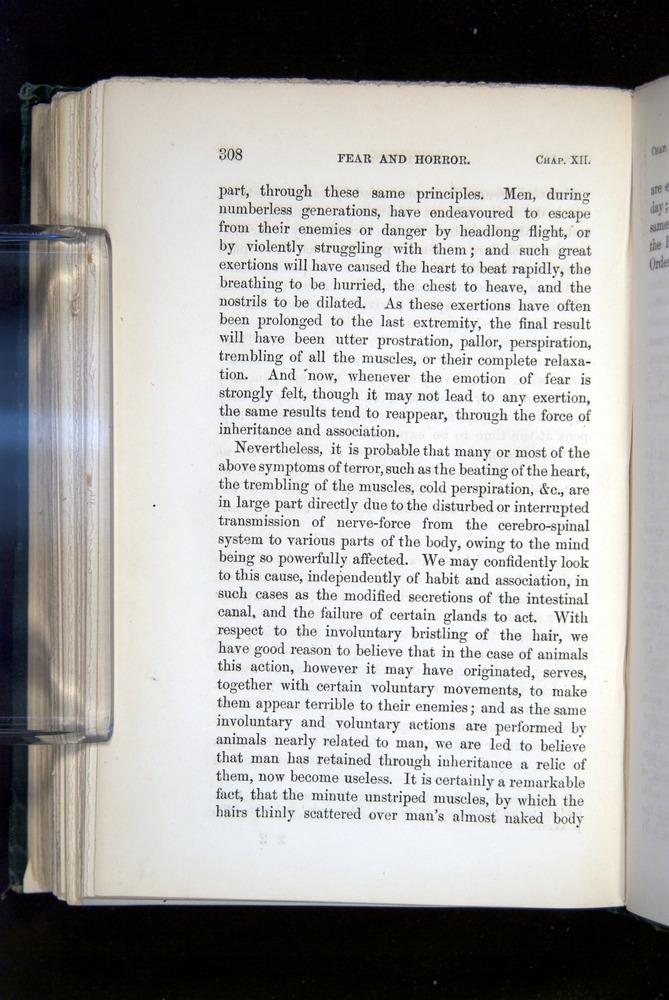 Image of Darwin-F1142-1872-308