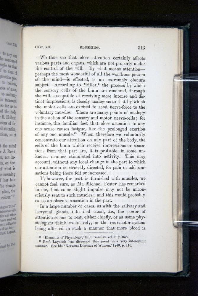 Image of Darwin-F1142-1872-343