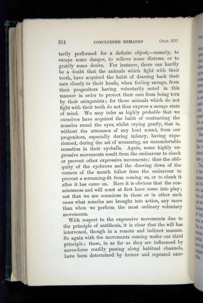 Image of Darwin-F1142-1872-354