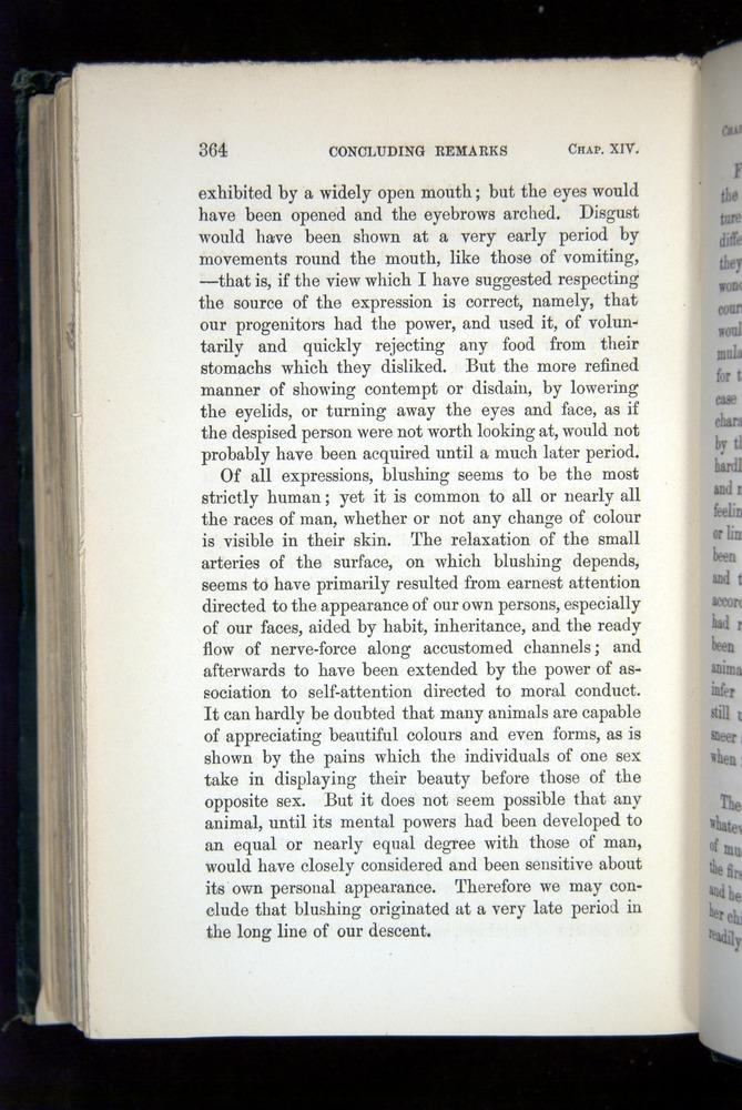 Image of Darwin-F1142-1872-364