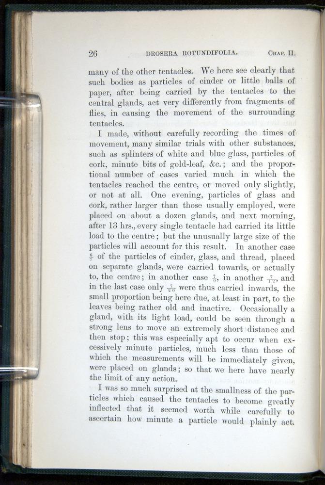 Image of Darwin-F1218-1875-00026