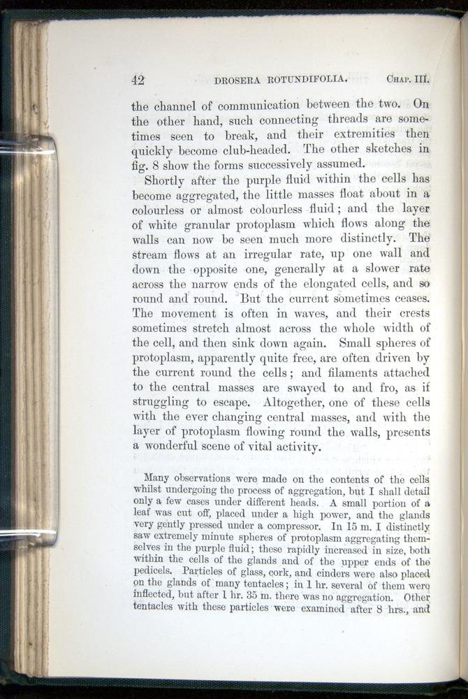 Image of Darwin-F1218-1875-00042