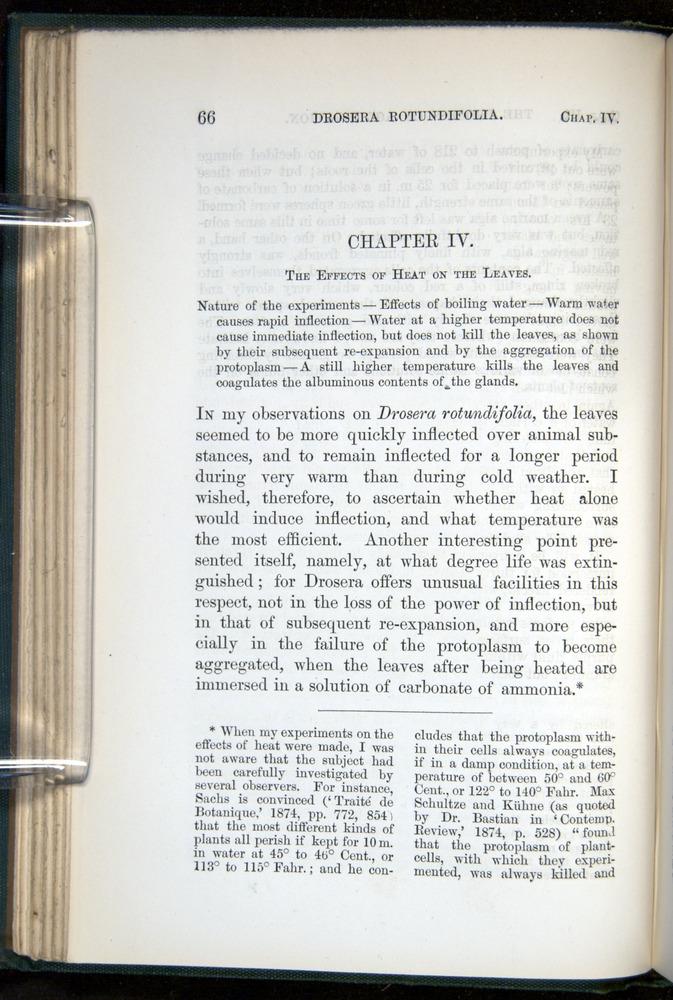 Image of Darwin-F1218-1875-00066