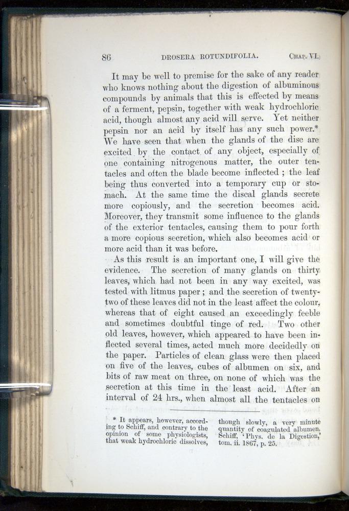 Image of Darwin-F1218-1875-00086