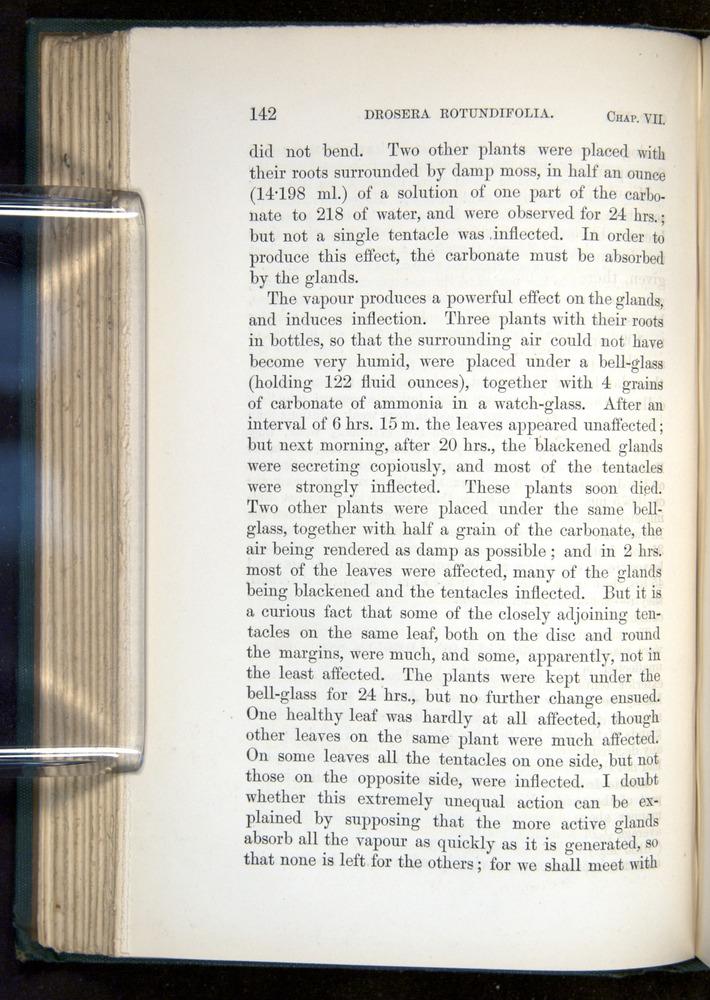 Image of Darwin-F1218-1875-00142