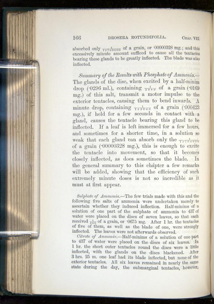 Image of Darwin-F1218-1875-00166