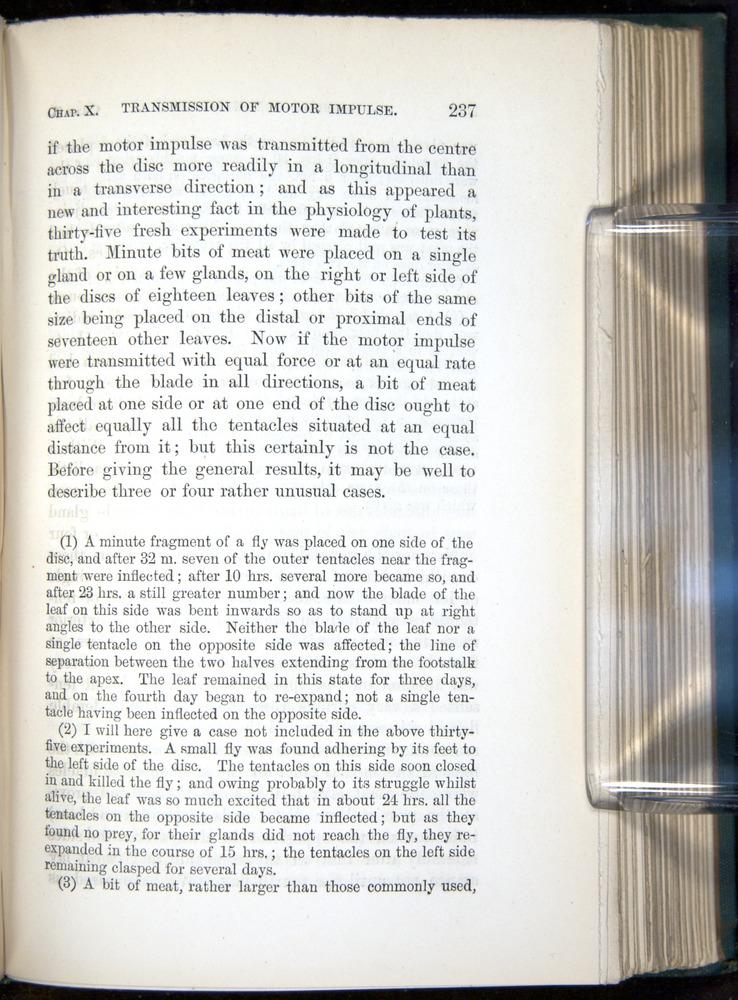 Image of Darwin-F1218-1875-00237