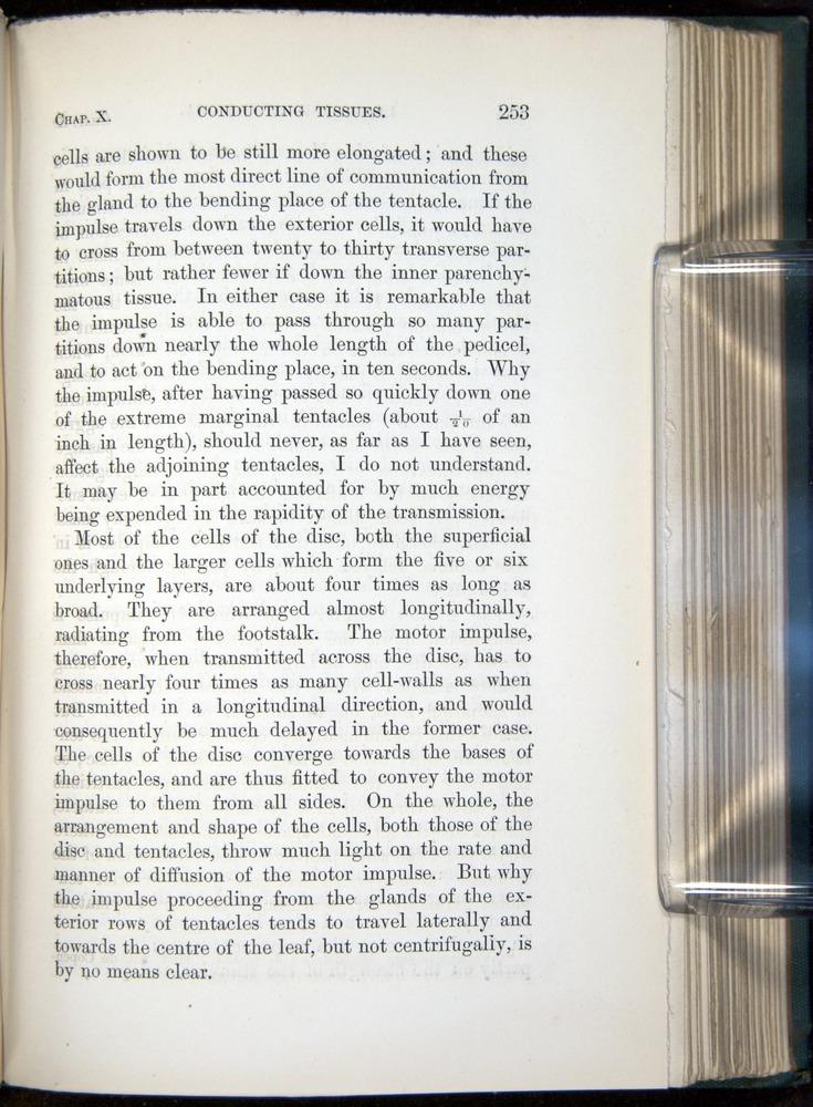 Image of Darwin-F1218-1875-00253
