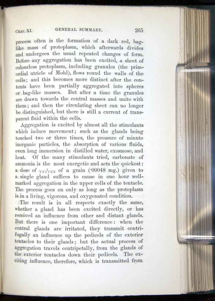 Image of Darwin-F1218-1875-00265