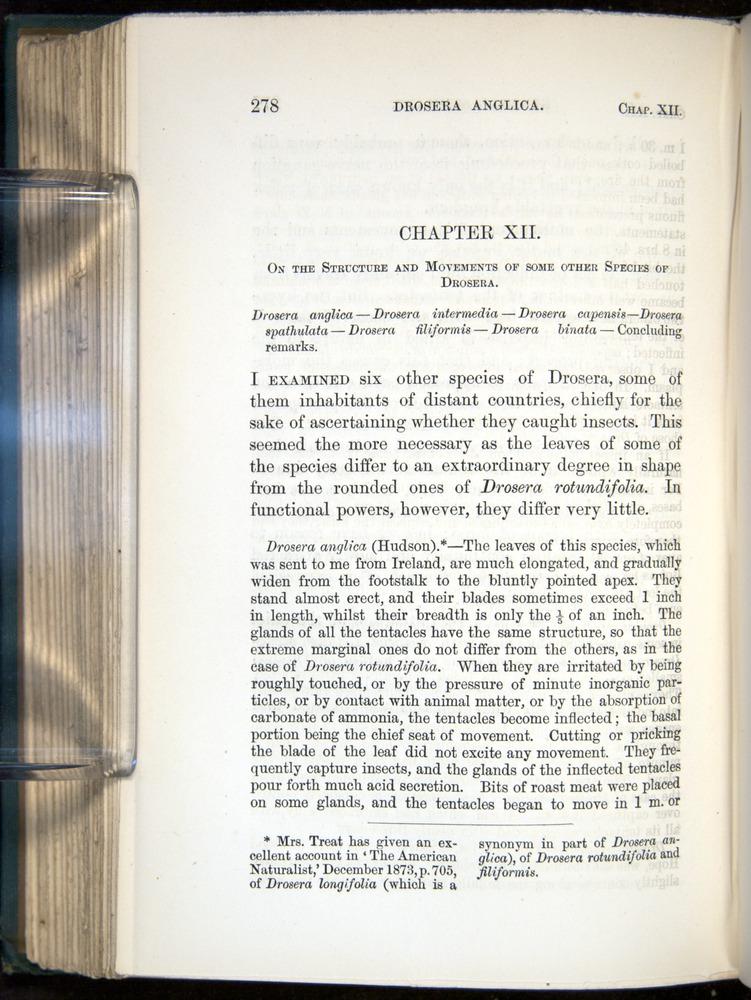 Image of Darwin-F1218-1875-00278