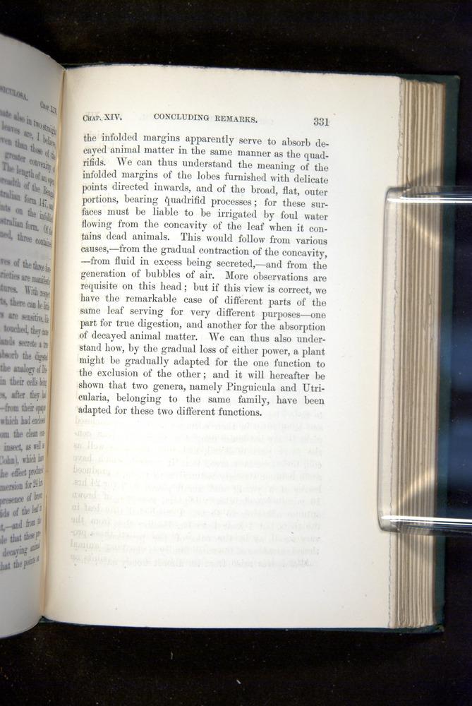 Image of Darwin-F1218-1875-00331