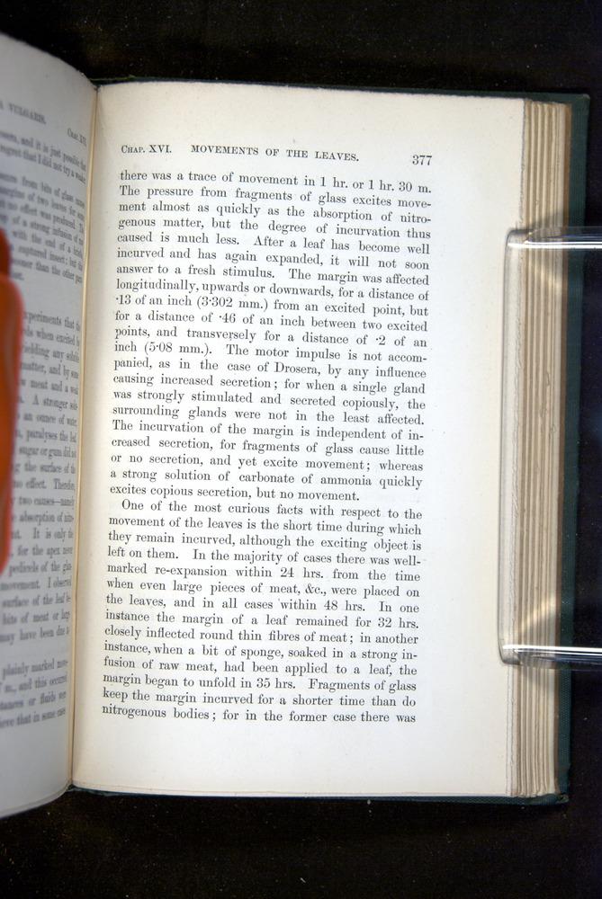 Image of Darwin-F1218-1875-00377