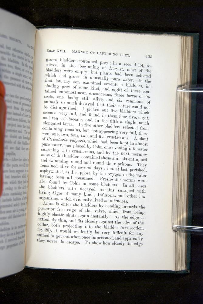 Image of Darwin-F1218-1875-00405