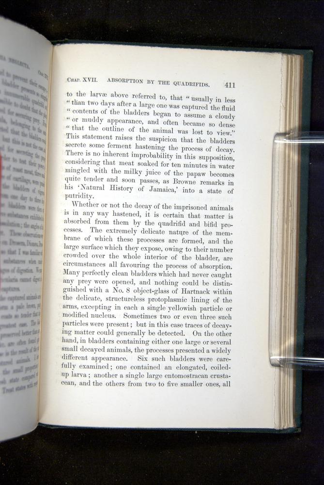 Image of Darwin-F1218-1875-00411
