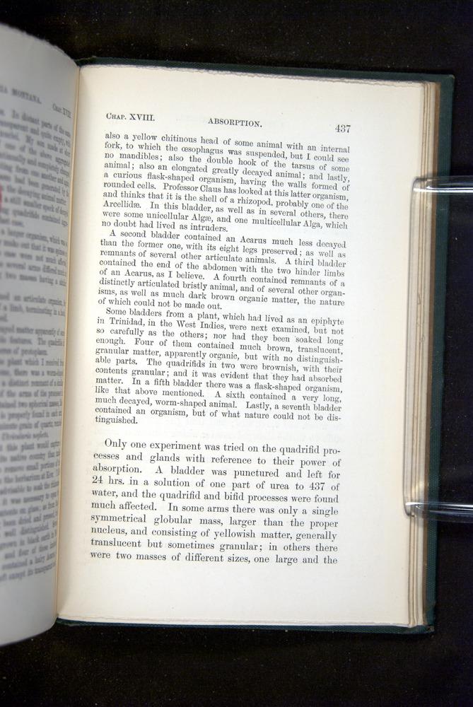 Image of Darwin-F1218-1875-00437