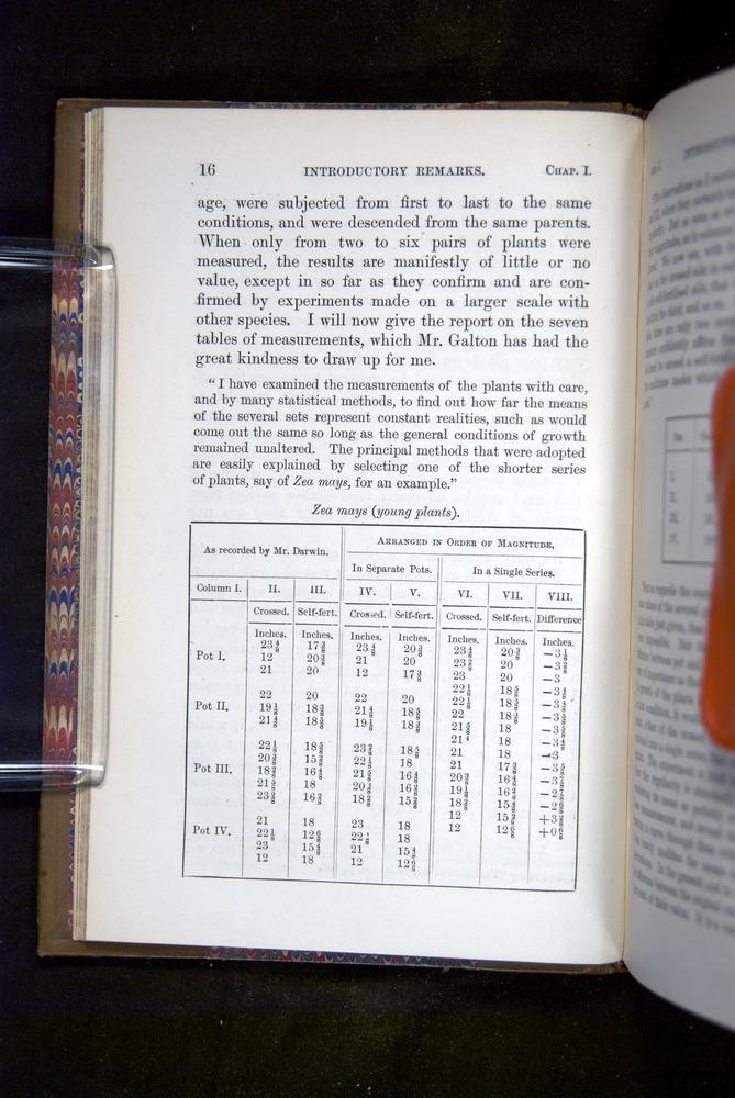 Image of Darwin-F1249-1876-016