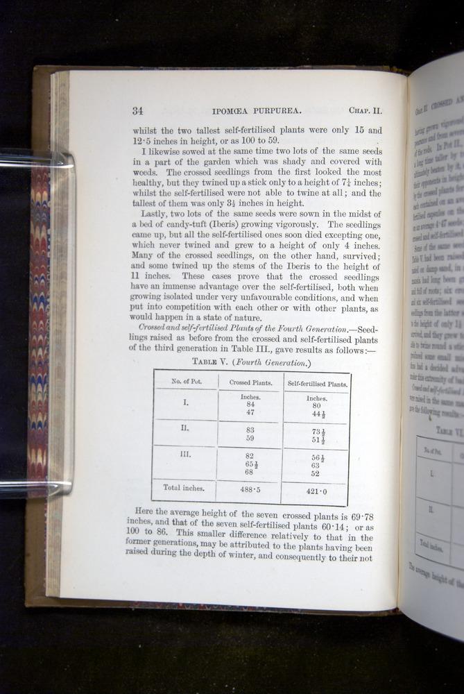 Image of Darwin-F1249-1876-034