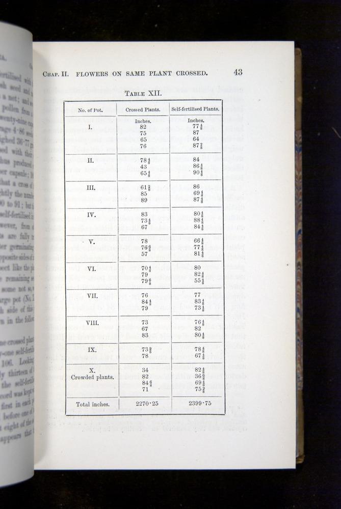 Image of Darwin-F1249-1876-043