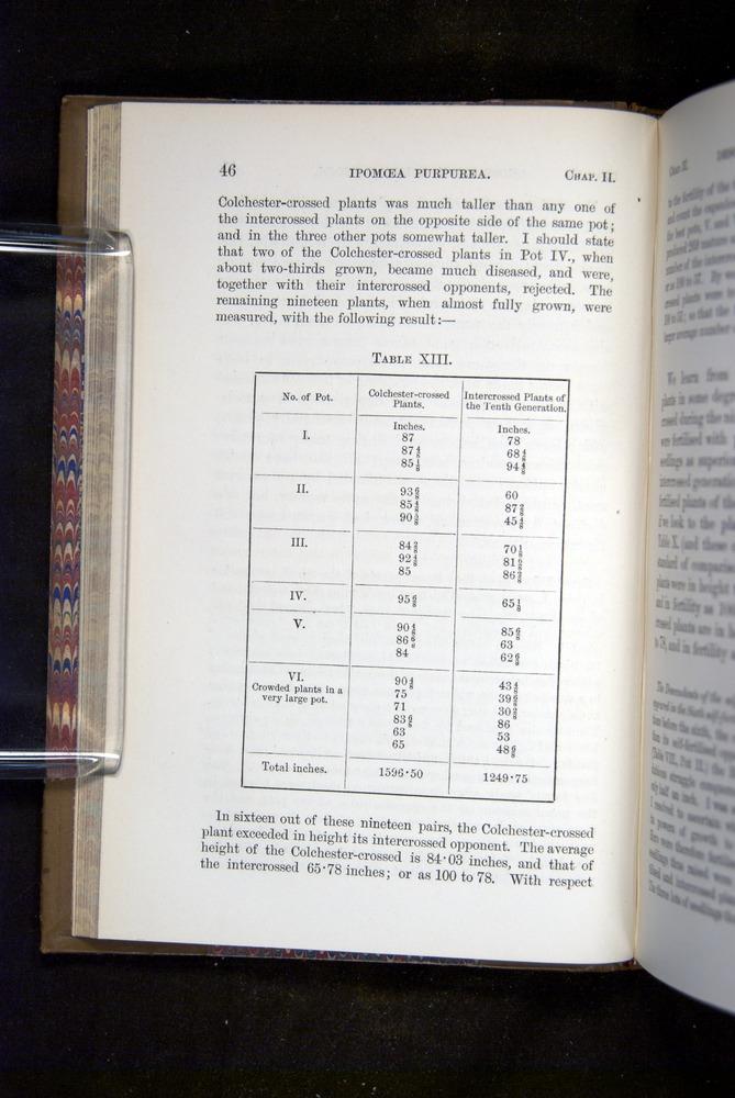 Image of Darwin-F1249-1876-046