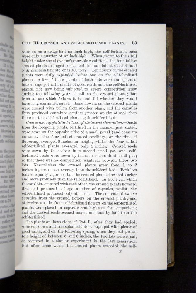 Image of Darwin-F1249-1876-065