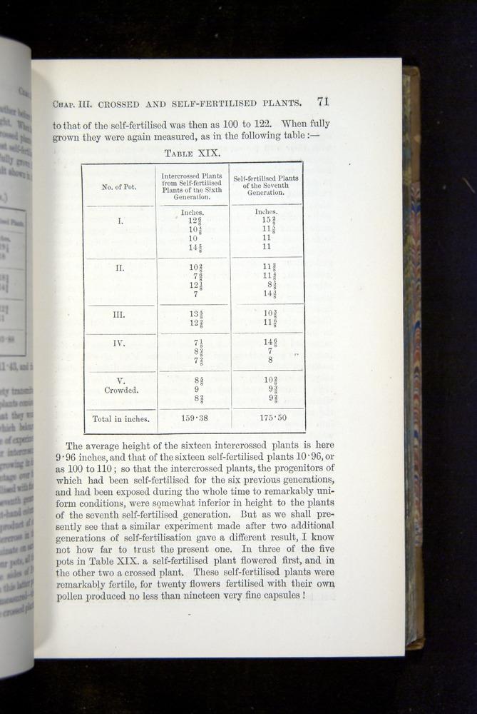 Image of Darwin-F1249-1876-071