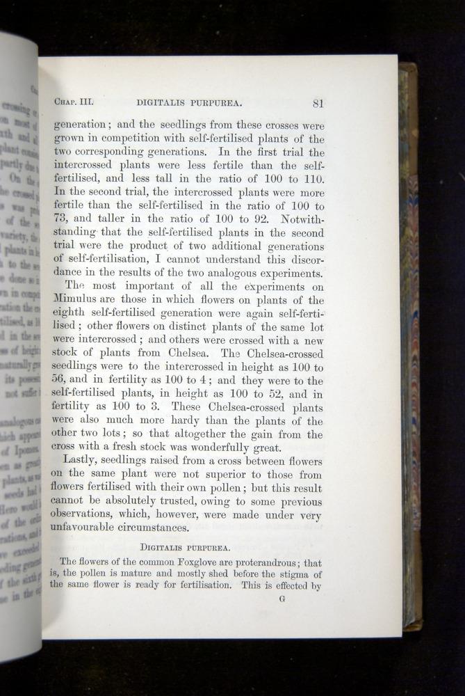Image of Darwin-F1249-1876-081