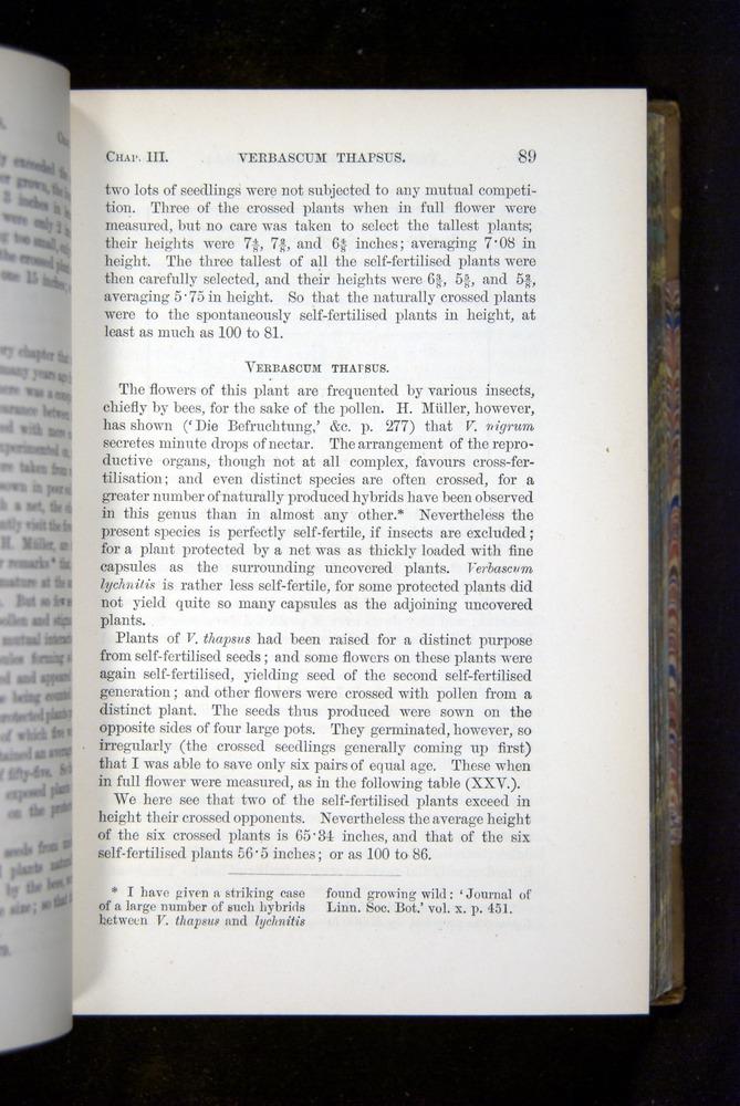 Image of Darwin-F1249-1876-089
