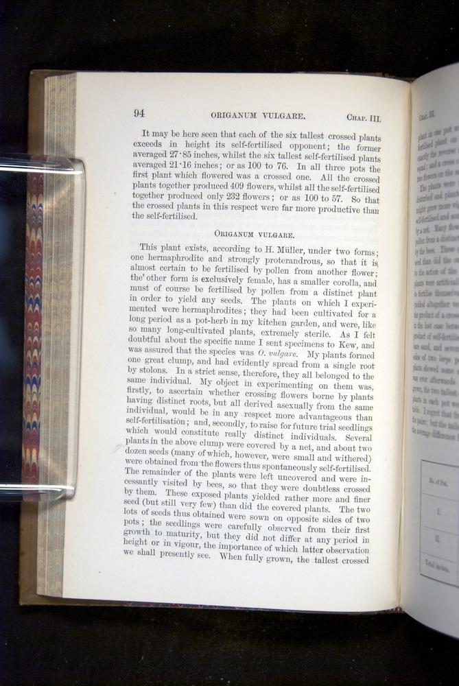 Image of Darwin-F1249-1876-094