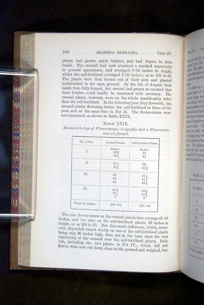 Image of Darwin-F1249-1876-100