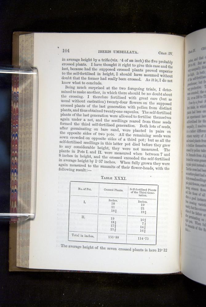 Image of Darwin-F1249-1876-104