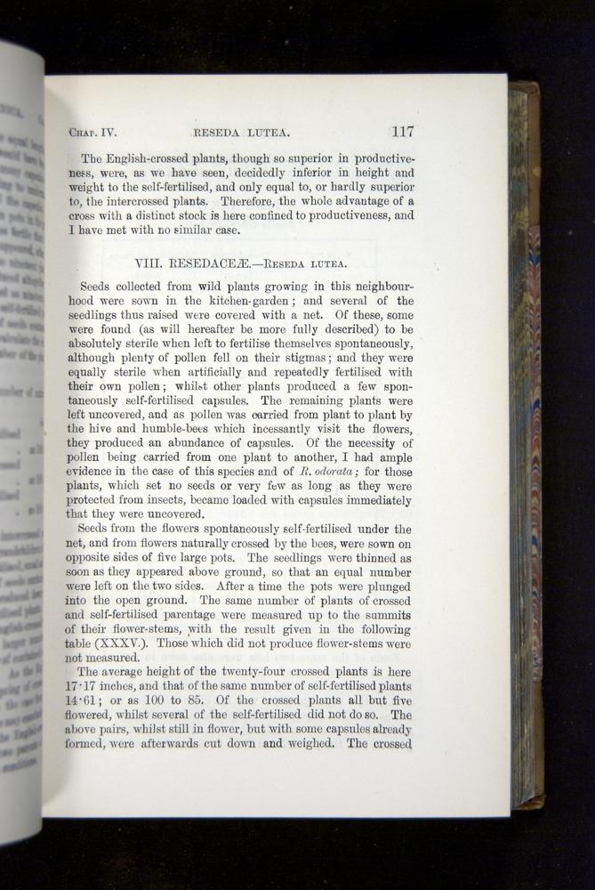 Image of Darwin-F1249-1876-117