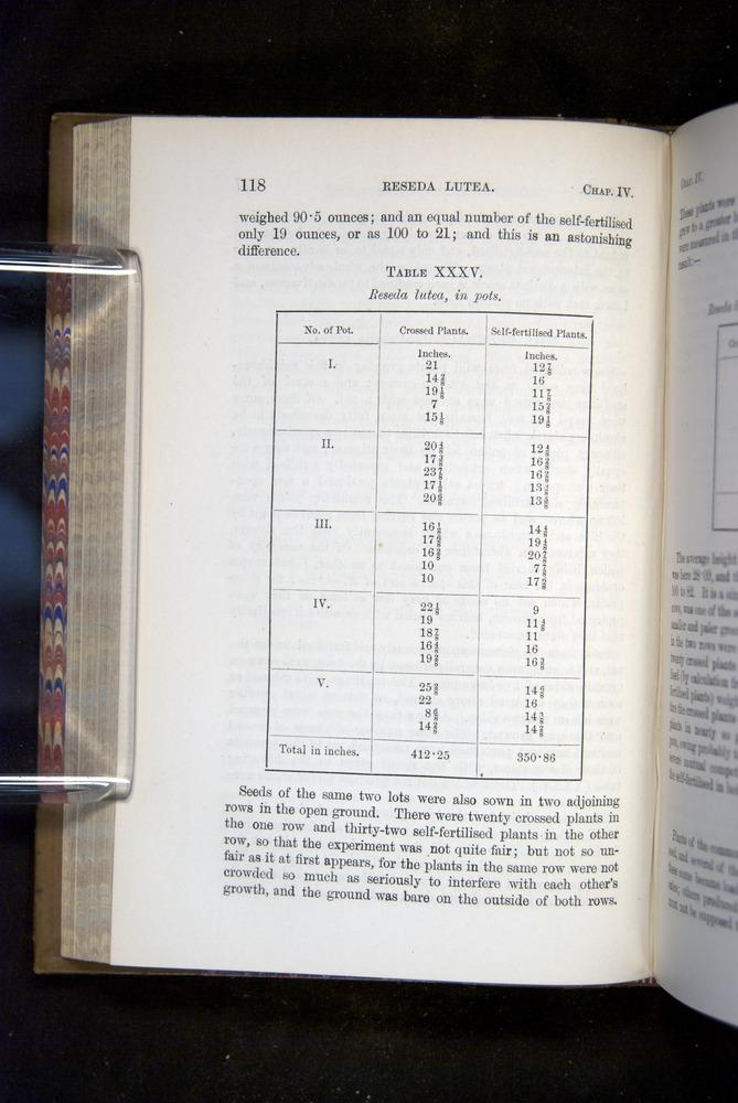 Image of Darwin-F1249-1876-118