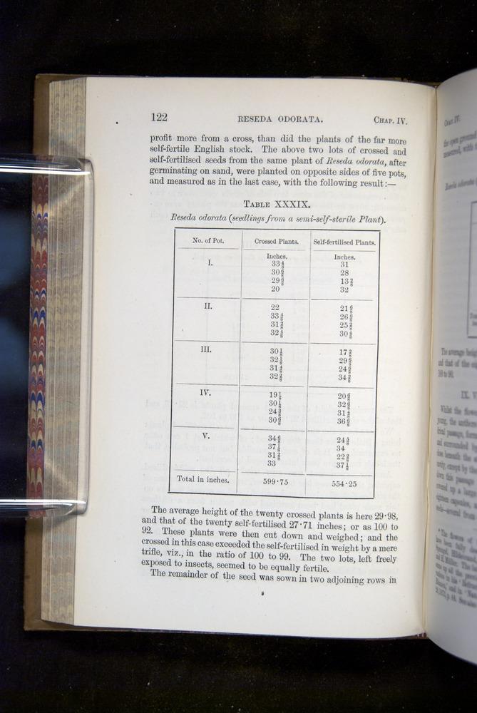 Image of Darwin-F1249-1876-122