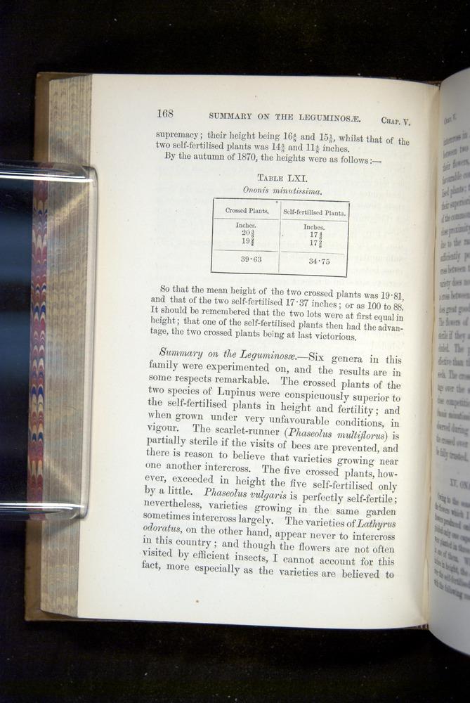 Image of Darwin-F1249-1876-168