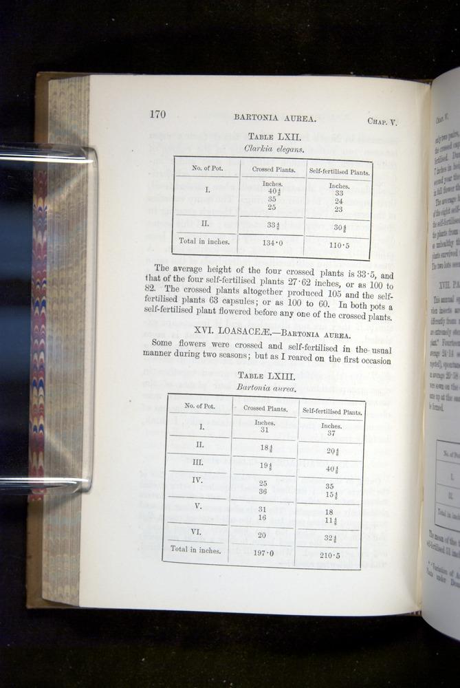 Image of Darwin-F1249-1876-170