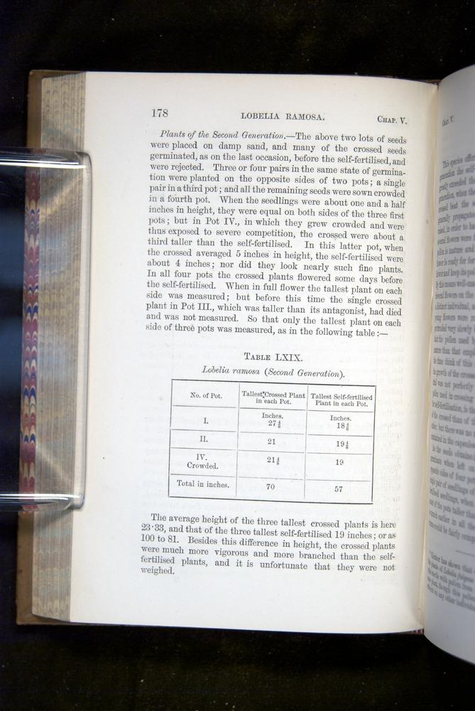 Image of Darwin-F1249-1876-178