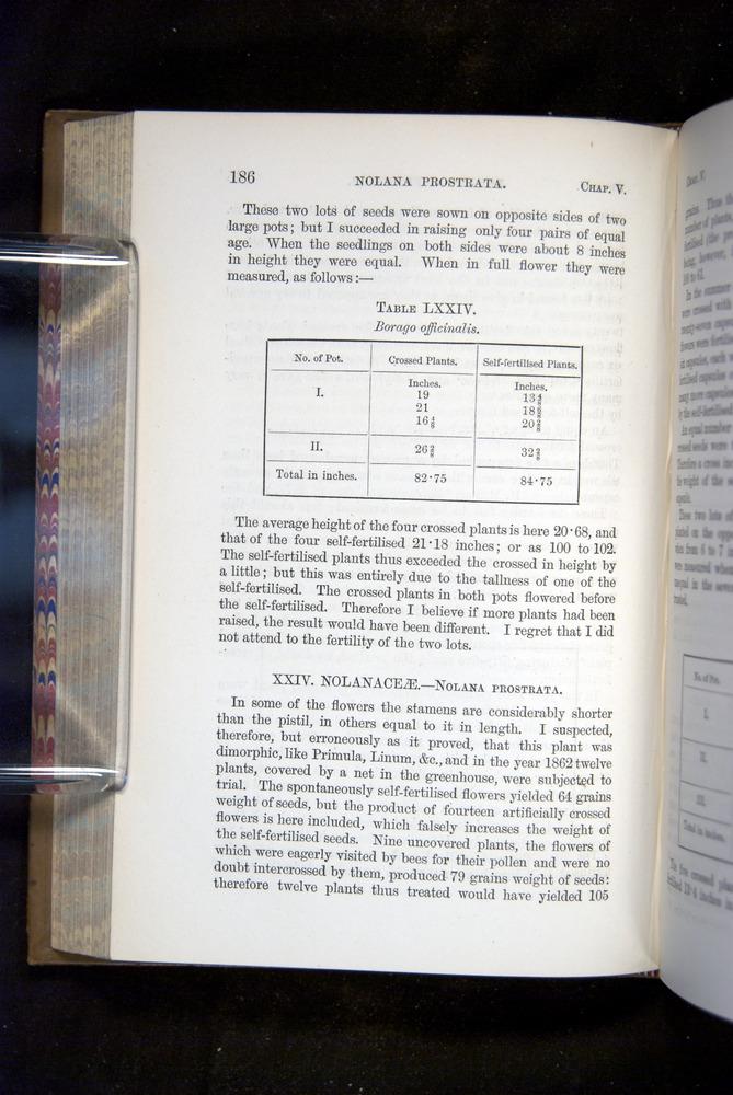Image of Darwin-F1249-1876-186