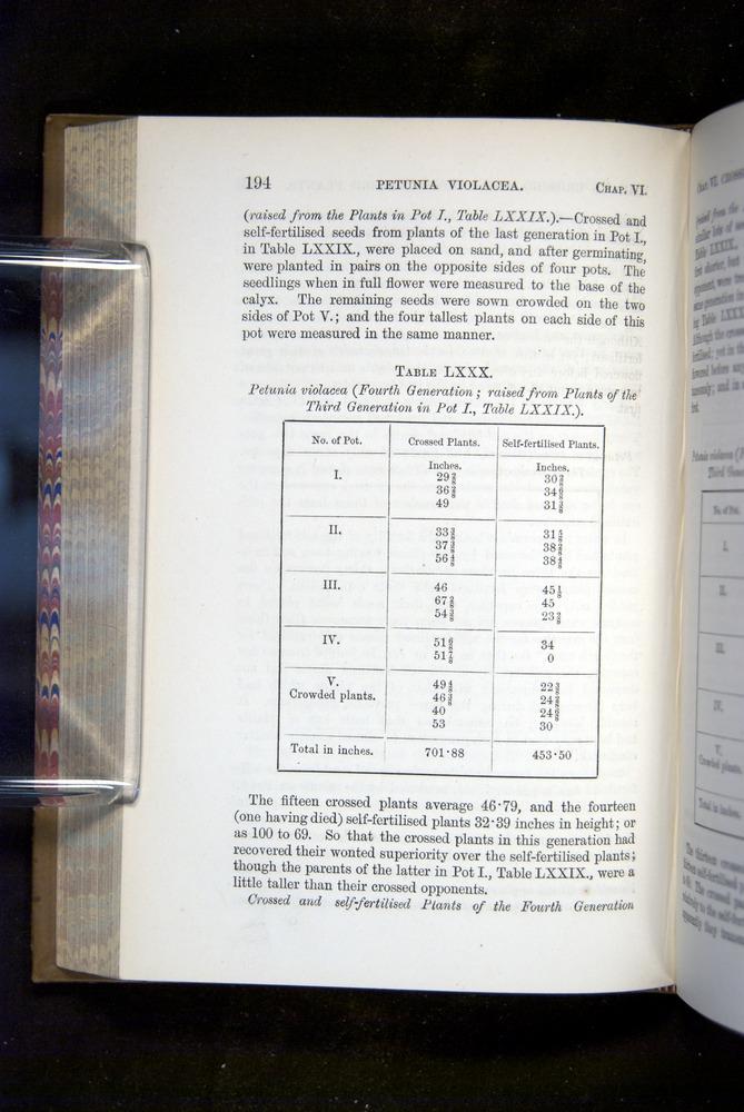 Image of Darwin-F1249-1876-194