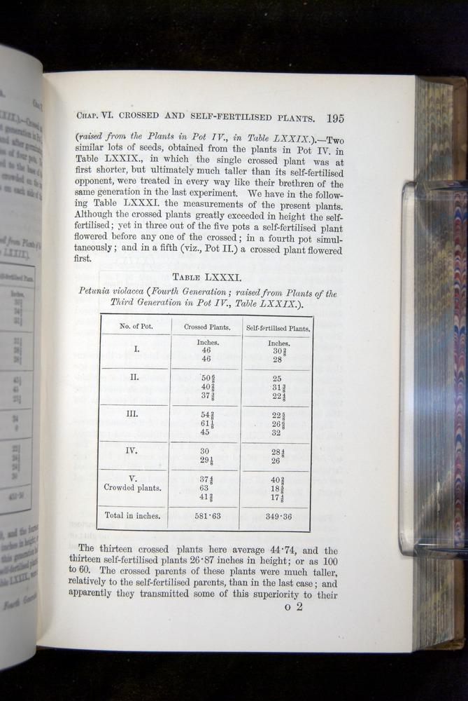 Image of Darwin-F1249-1876-195