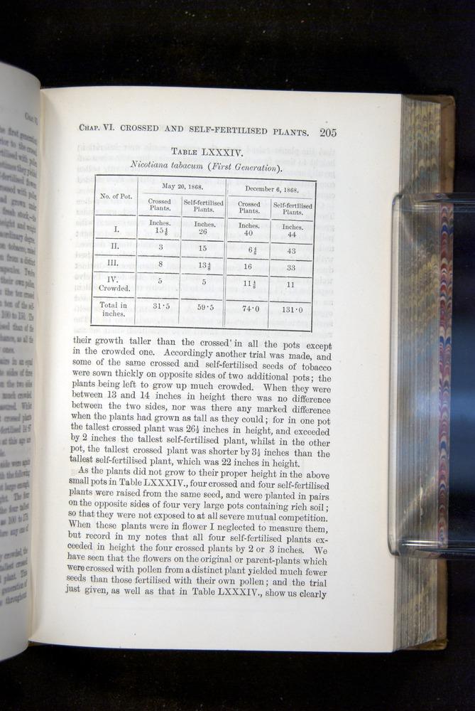Image of Darwin-F1249-1876-205