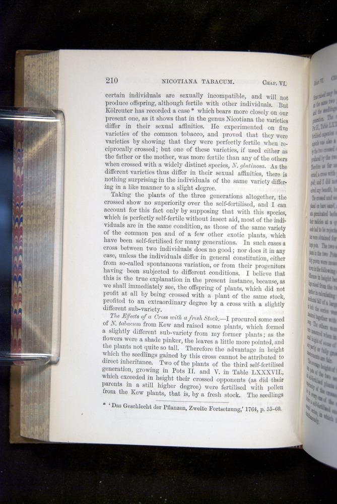 Image of Darwin-F1249-1876-210