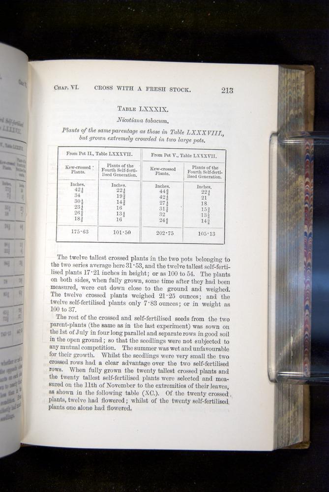Image of Darwin-F1249-1876-213