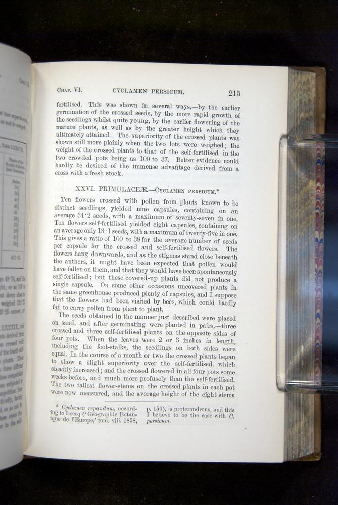 Image of Darwin-F1249-1876-215