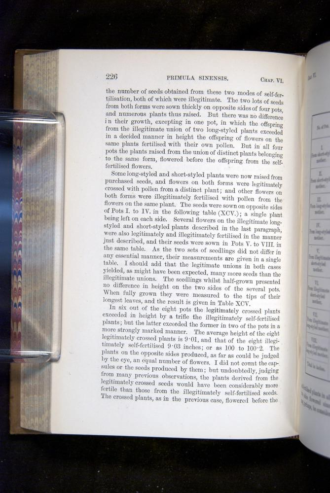 Image of Darwin-F1249-1876-226