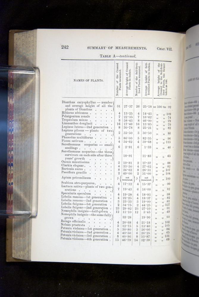 Image of Darwin-F1249-1876-242